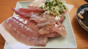 【アジの締め方 簡単3種類】釣った魚、持ち帰り方のおすすめは? 美味しく食べる