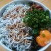 【釣り人の刺身醤油!!】湯浅醤油「にごりびしお」で食べるシラス丼