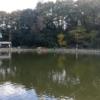 20191130都心で管理釣り場を初体験 ベリーパークinフィッシュオン王禅寺@川崎 BBQ