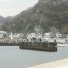20200327小湊港の昼カマス・堤防散歩・アジ釣り夕まず目の準備