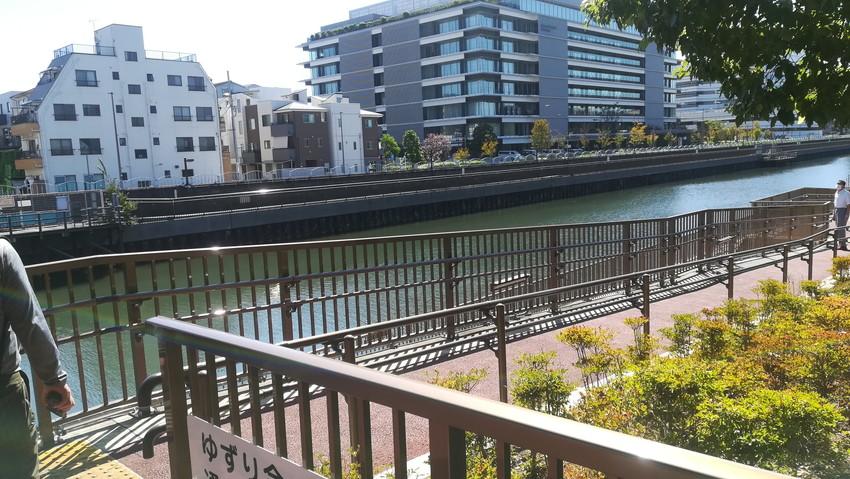 横十間川沿いを歩く