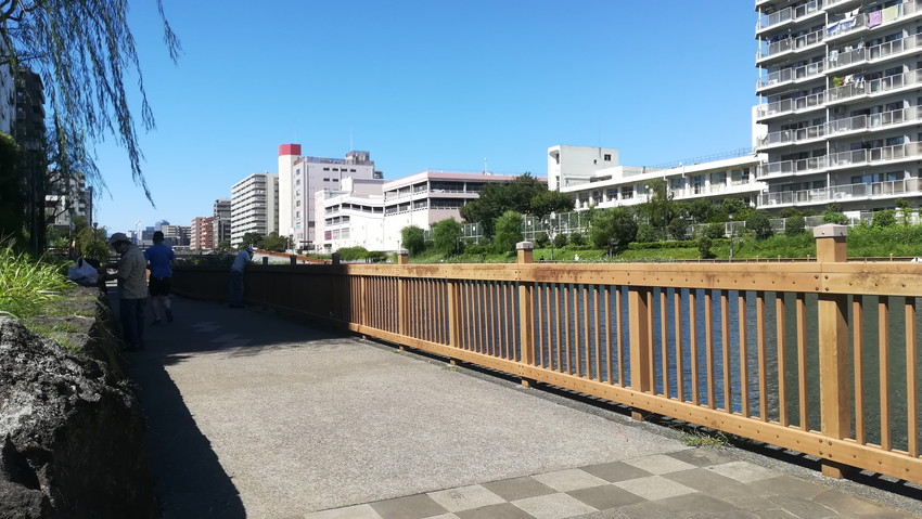 真昼間の小名木川のハゼ釣りの様子