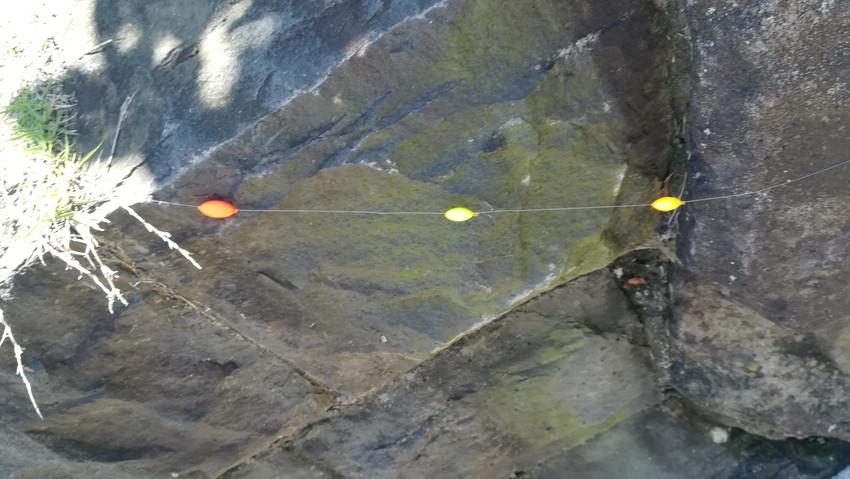 シモリウキのつけ方の画像